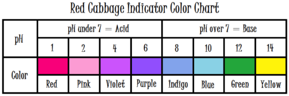 Red Cabbage Indicator Chart